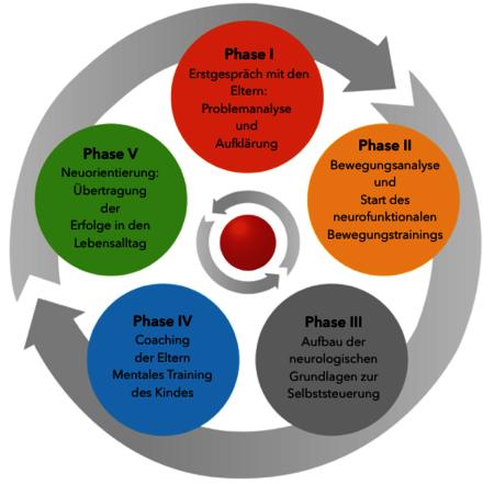Die 5 Phasen der ADHS – Therapie